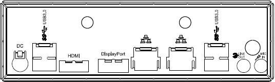 ASUS H110T Mainboard Anschlussblende
